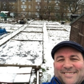 One man and his organic plot - February 2019