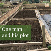 One man and his plot March 2021